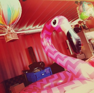 2017_06_Rosa Ouest_Pink Flamingo