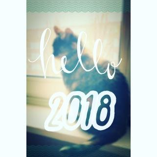 HappyNewYear2018-3